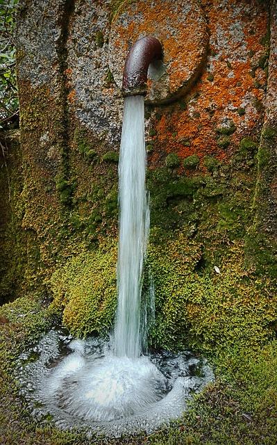 source-eau-pure-vodaflor